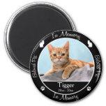 - Pérdida de gato - foto de encargo conmemorativa/ Imanes