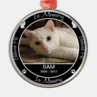 - Pérdida de gato - foto de encargo Adorno Para Reyes