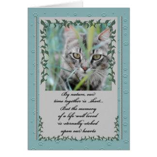 Pérdida de la condolencia del mascota de Tabby del Tarjeta De Felicitación