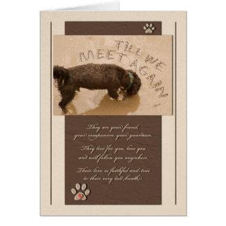 Pérdida de la condolencia del mascota de una tarjeta de felicitación