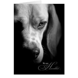 Pérdida de una tarjeta de condolencia del mascota