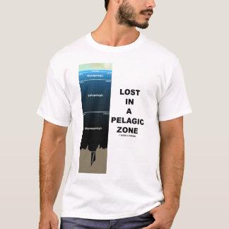 Perdido en una zona pelágica (oceanografía) playera