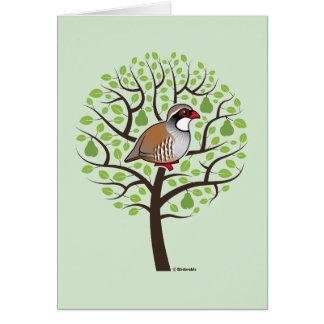 Perdiz en un peral tarjeta de felicitación