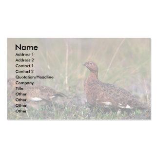Perdiz-gallina y varón del sauce tarjetas de visita