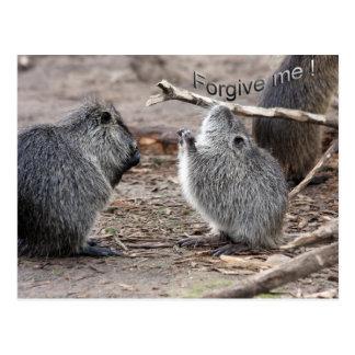perdóneme tarjeta postal