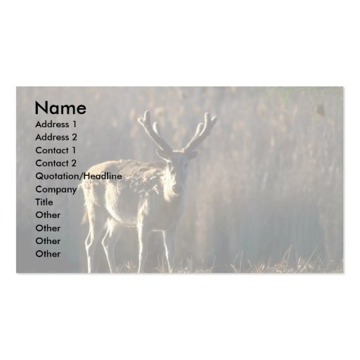 Pere David's Deer-stag in velvet Double-Sided Standard Business Cards (Pack Of 100)