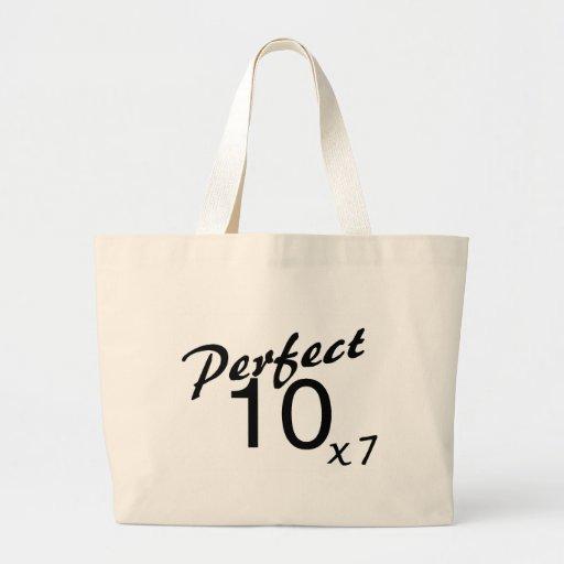 Perect 10 x7 canvas bag