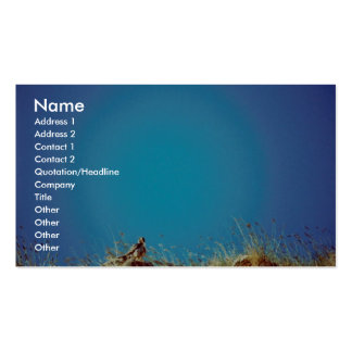 Peregrine Business Cards