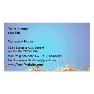 Peregrine Business Card