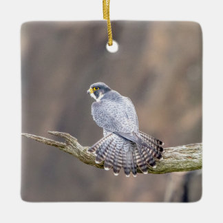 Peregrine Falcon at the Palisades Interstate Park Ceramic Ornament