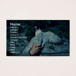 Peregrine Falcon Business Card