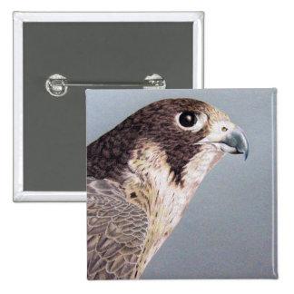 Peregrine Falcon Button