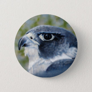 Peregrine Falcon Button