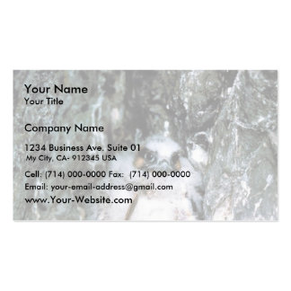 Peregrine Falcon Chick Business Card Template