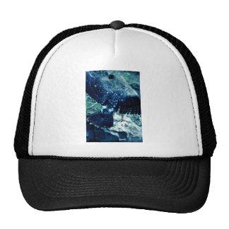 Peregrine Falcon Mesh Hat