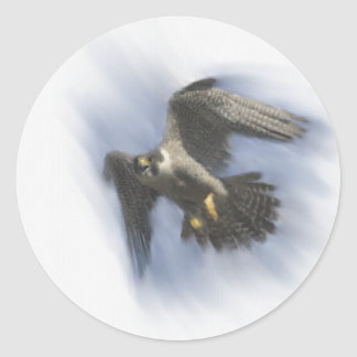 Peregrine Falcon in Flight Classic Round Sticker