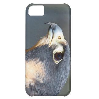 Peregrine Falcon in Profile Case For iPhone 5C