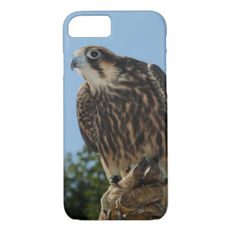 Peregrine Falcon iPhone 8/7 Case