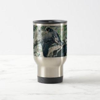 Peregrine Falcon, juvenile Coffee Mug