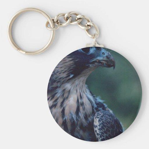 Peregrine Falcon Key Chain