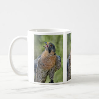 Peregrine Falcon Moon Rising Coffee Mug