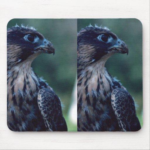 Peregrine Falcon Mouse Pad