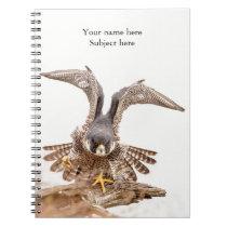 Peregrine Falcon Notebook