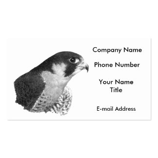 Peregrine Falcon-Pencil Double-Sided Standard Business Cards (Pack Of 100)