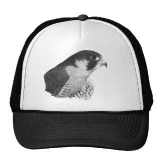 Peregrine Falcon-Pencil Hat