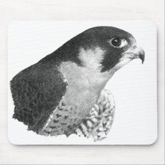 Peregrine Falcon-Pencil Mouse Pads
