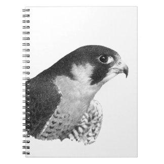 Peregrine Falcon-Pencil Spiral Notebook