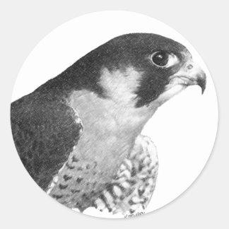 Peregrine Falcon-Pencil Classic Round Sticker