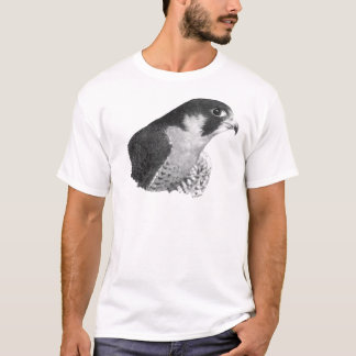 Peregrine Falcon-Pencil T-Shirt