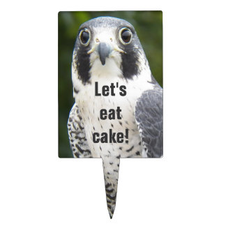 Peregrine Falcon Photo Cake Topper