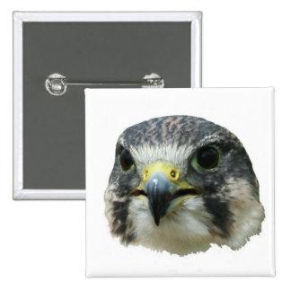Peregrine Falcon Pinback Button