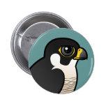Peregrine Falcon Pinback Buttons