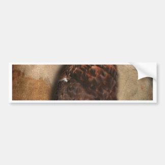 Peregrine Falcon Profile Car Bumper Sticker