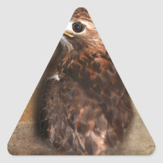 Peregrine Falcon Profile Triangle Sticker