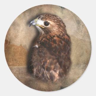 Peregrine Falcon Profile Classic Round Sticker