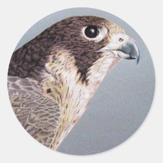 Peregrine Falcon Sticker Round Sticker