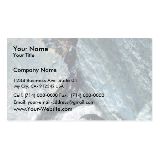 Peregrine Falcon with chicks Business Cards