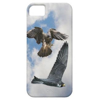 Peregrine Falcons in flight Case-Mate iPhone 5 iPhone 5 Case