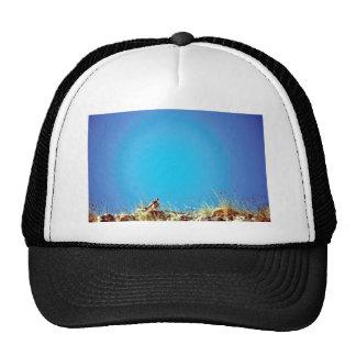 Peregrine Mesh Hats