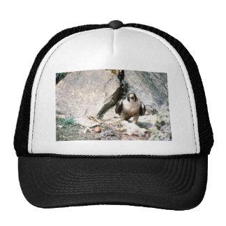 Peregrine Mesh Hat