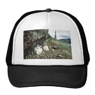 Peregrine Trucker Hat