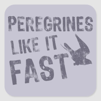 Peregrines Like It Fast Square Sticker