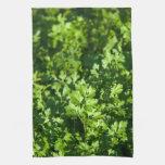 Perejil fresco orgánico en un jardín toallas