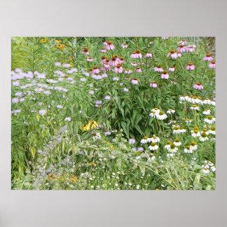 Perennial Garden Poster
