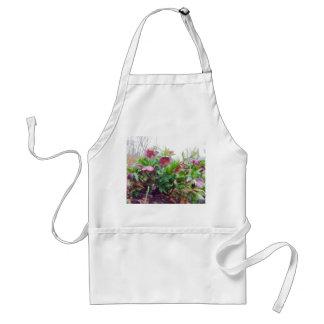 Perennial Hellebore Plants In The Garden Apron