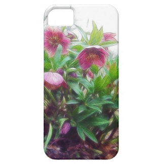Perennial Hellebore Plants In The Garden iPhone SE/5/5s Case